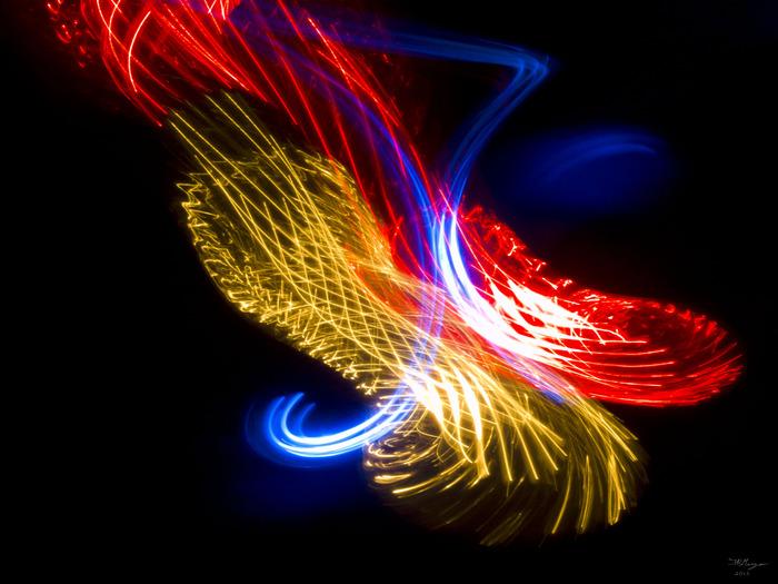 Embrace of Lights