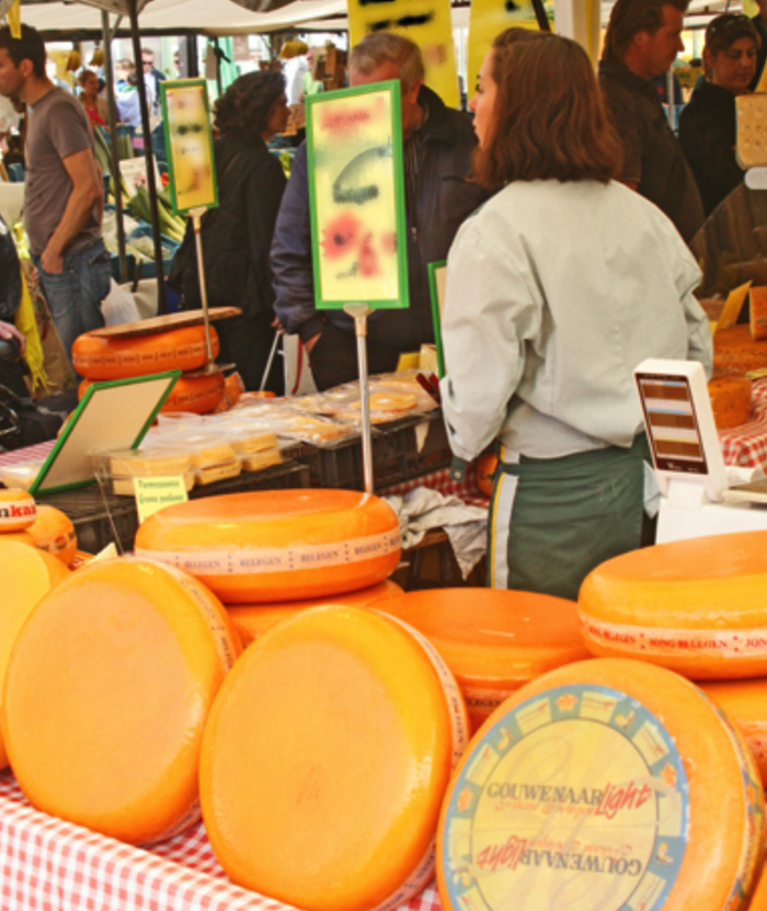 Artisan cheeses at the market.