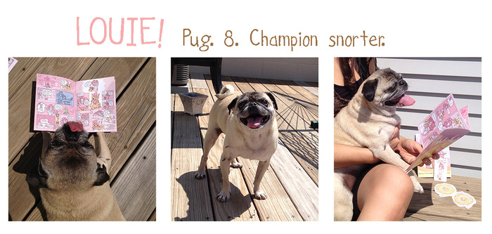 Meet Louie, and 8 year old Chicago Pug!  He's a little old, so he can't eat TOO many sweets, but he sure does love The Hasty Pastry.