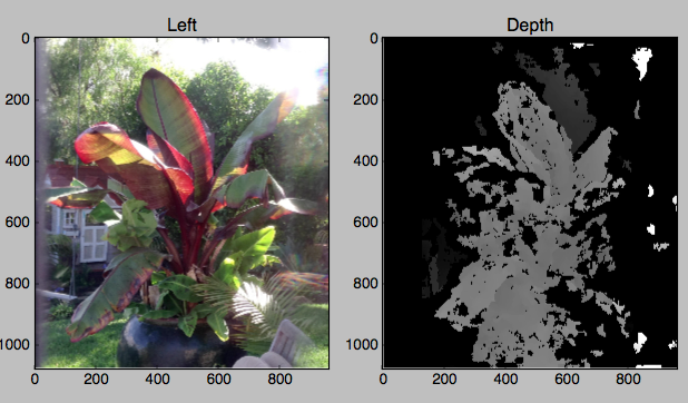 Experimental analysis of Poppy 3D images to build depth maps useful in CAD modeling and interactive visualizations