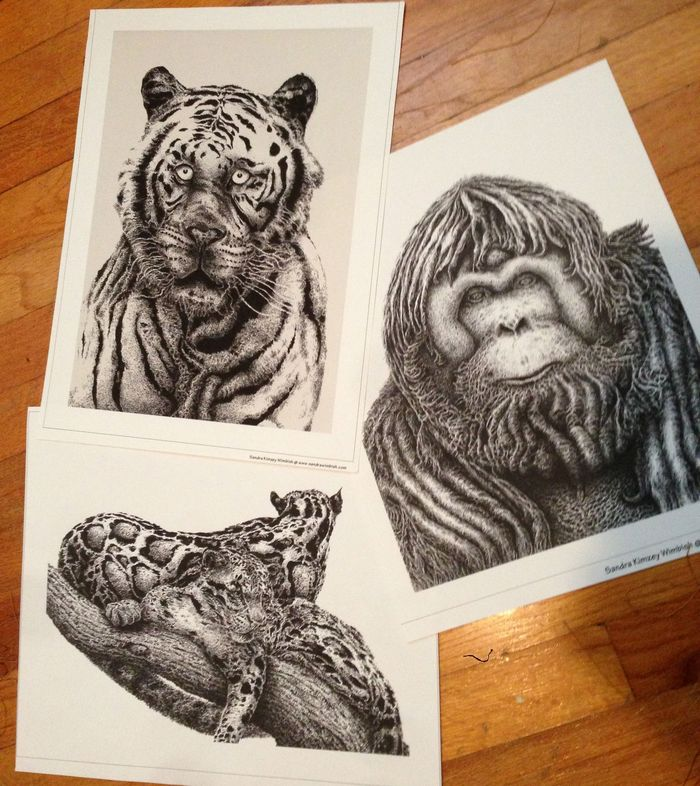 Choose from one of these three awesome Pen and Ink prints!