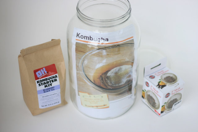Kombucha Brewing Kit [$60 pledge]
