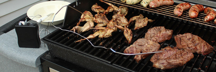 Grilling Steak & Quail with the BBiQ™