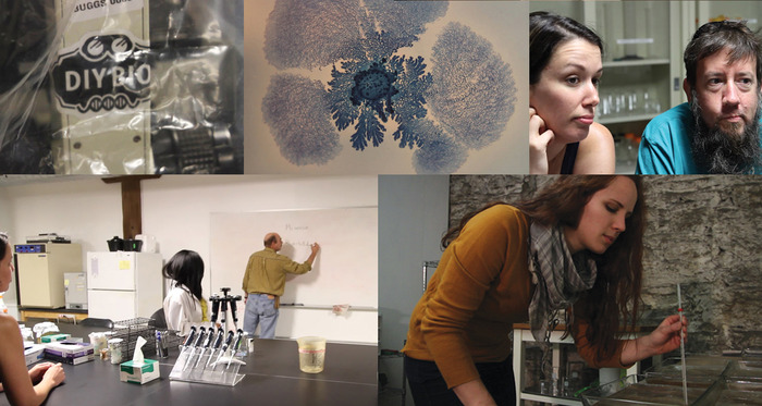 Baltimore's Underground Science Space (BUGSS), Nurit Bar-Shai's bacteria sculpture (top middle), and Nikki Romanello in her studio in Red Hook (bottom right).