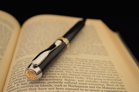 Chrome plated Triton pen with 24kt Gold plated accents and Ancient Bog Oak