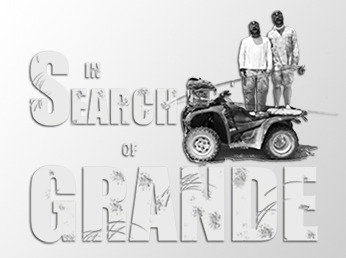 In Search of Grande Transparent Sticker