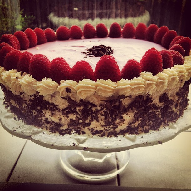 Chocolate Raspberry Bavarian Torte