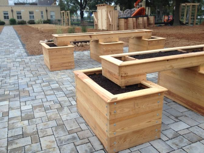 Wheelchair accessible beds and pathways at one of our school gardens