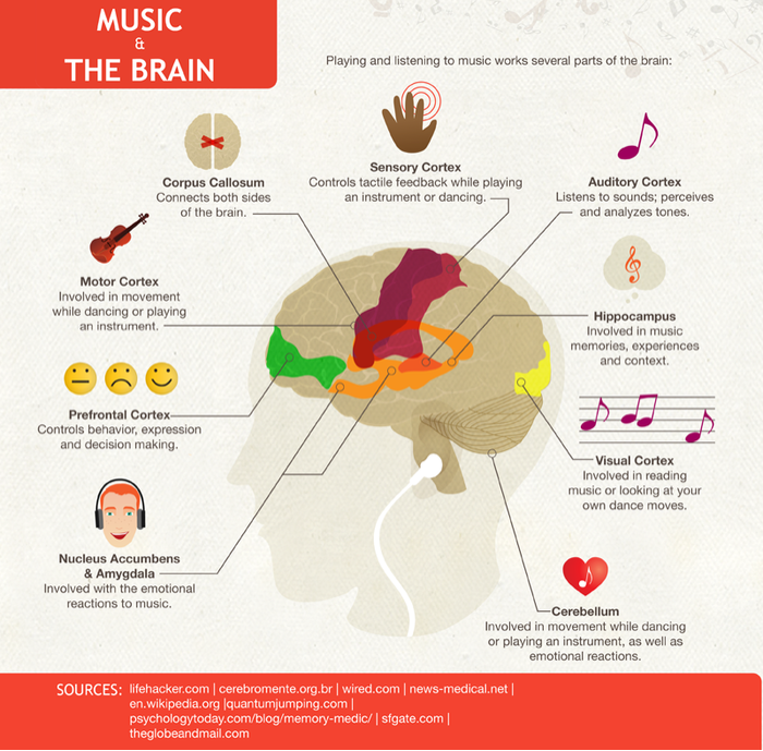 "Music has a ""metaplastic"" affect on the brain, enhancing many other abilities beyond music."