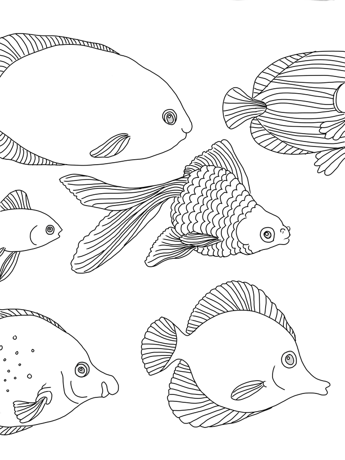 swimmy coloring pages - photo#4