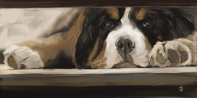 "This digital portrait of ""Beorn Waiting"" is availabe as a part of a $79 or $199 pledge; or for a higher plege level receive a custom portrait of your pet!"