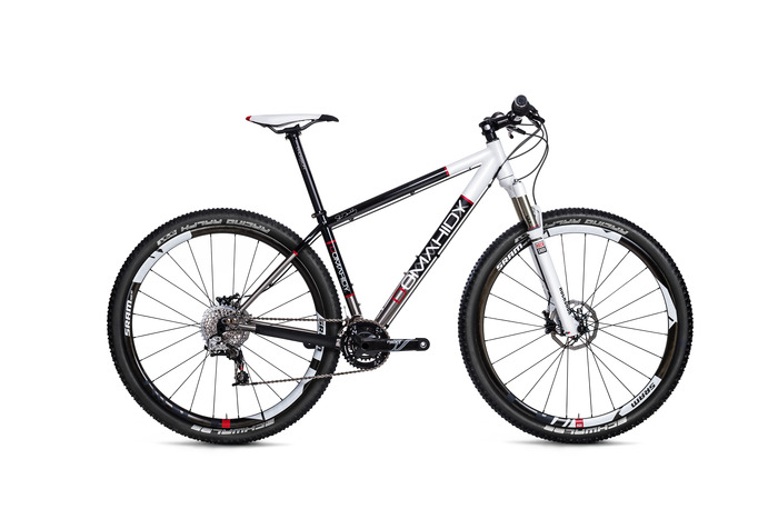 Domahidy Designs Titanium 29er with full XX