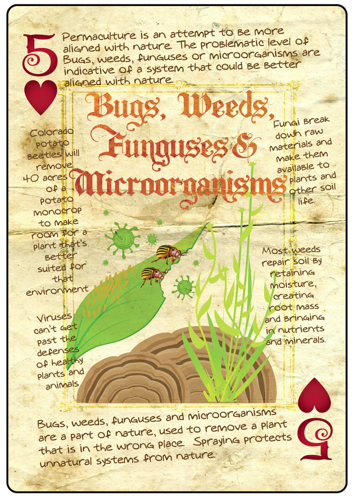 Bugs, Weeds, Funguses and Microorganisms