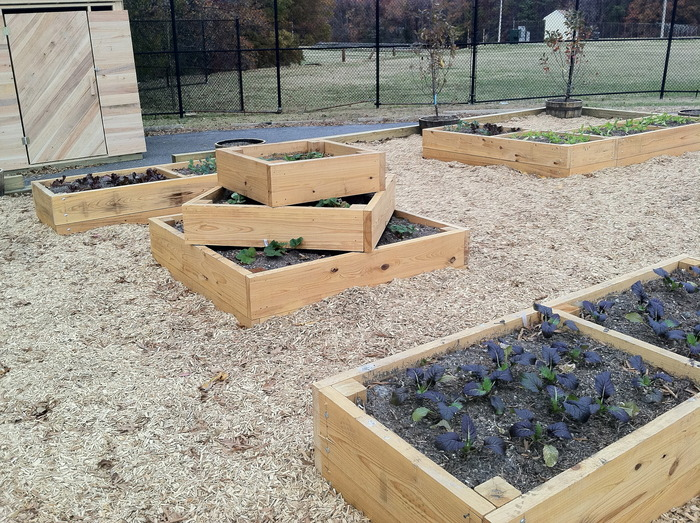 "These raised beds are all at least 24"", making it easier for people with physical disabilities to enjoy growing fruits and veggies"
