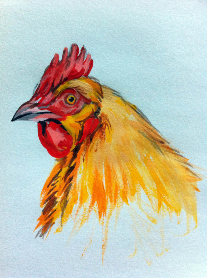 $20.00 Pledge: Gouache Nature Study. (Example is a chicken portrait.)