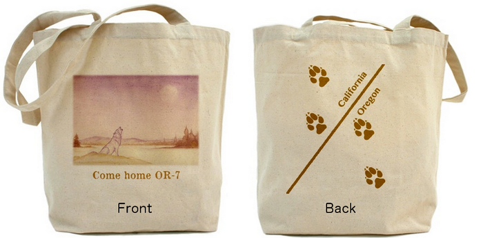 One canvas bag design--makes groceries cooler and better informed!