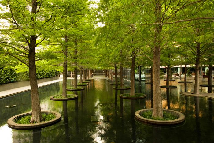 Gallery guide on modernist landscape architect dan kiley for Place landscape architecture