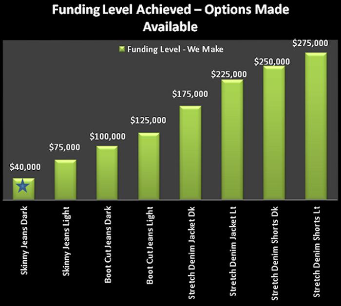 Funding Stretch Goals
