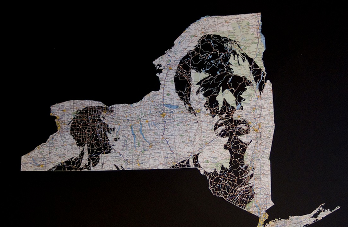 $5000 - Artists Nick Vaughn & Jake Margolin will create a custom cut-paper portrait in a map of your choosing of you (and a significant other, if you wish) like the one shown here. Nick & Jake will show their maps and more in the Garden Gallery in March.