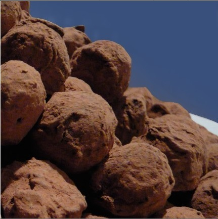 Hand rolled dark chocolate vanilla bean truffles