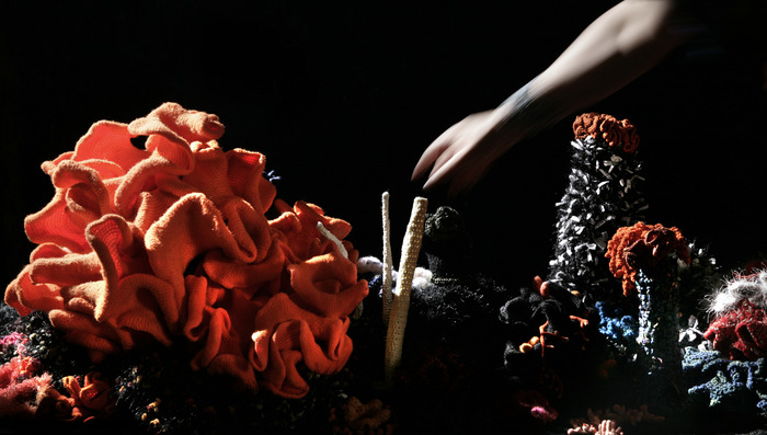 Giant crochet coral - a woolly fusion of craft and geometry.
