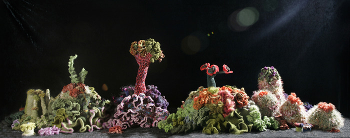 Crochet corals by moonlight.