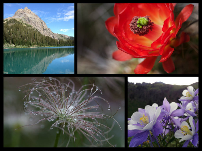A Room With A View: These are just a smidgen of a sampling of all the beautiful photography to choose from!
