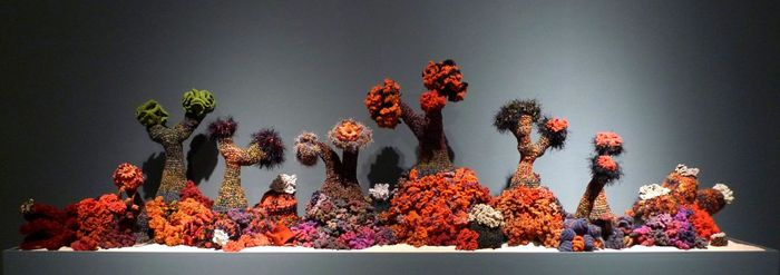 Branched Anemone Garden (from the collection of Lisa Yun Lee).