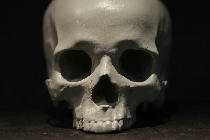 Robert Vignone's (@polysculture) skull print is ready for its close-up.