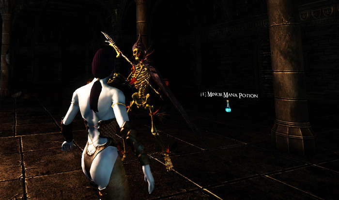 Dark Elf Female vs. Awesome Skeleton!