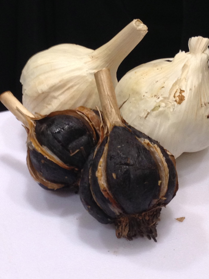 The real deal, Major Craig's Canadian Black Garlic