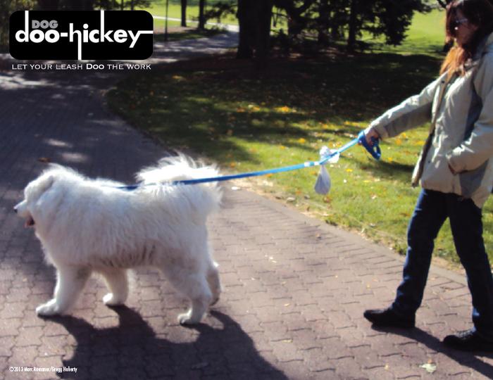 Professional dog walker using Dog Doo-Hickey