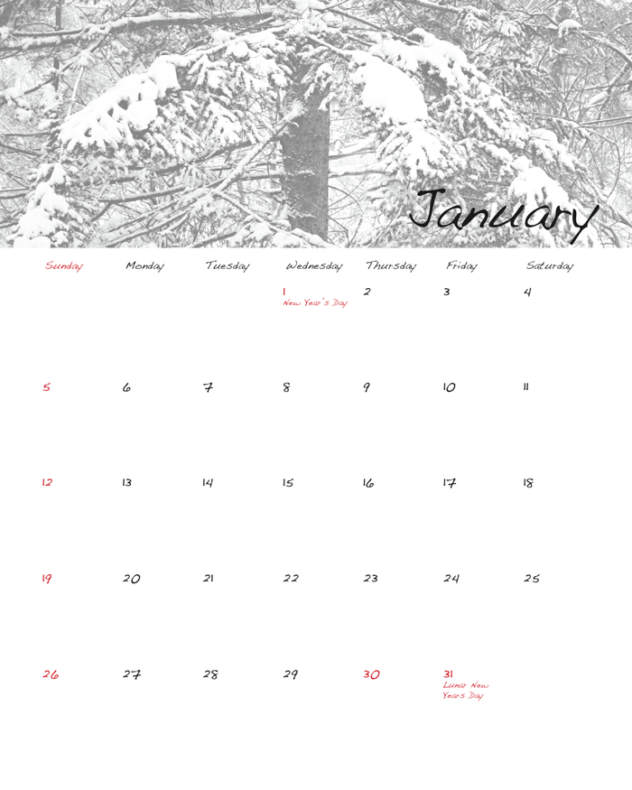 January mockup design (side two)