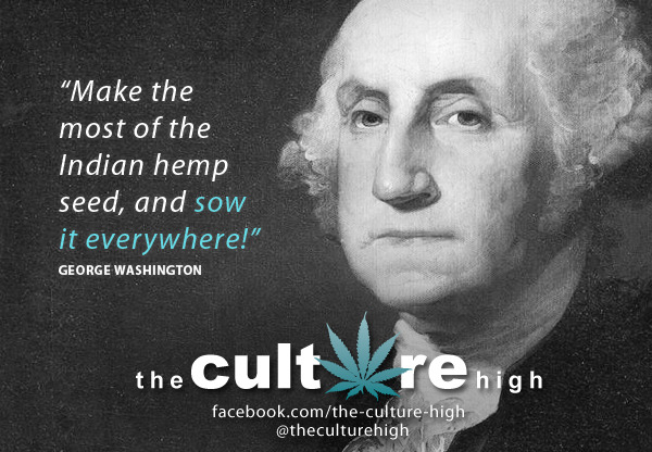 """Make the most of the Indian hemp seed, and sow it everywhere!"""
