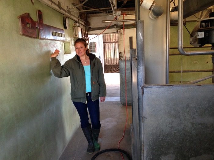 Marissa in the milking parlor. This is where your name will be painted and become a permanent reminder to everyone, and the cows, that you backed the boutique dairy project!