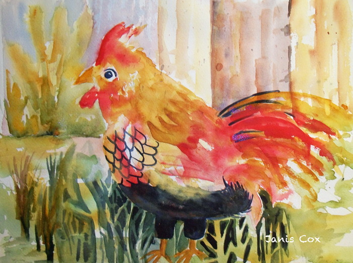 The Rooster: $75 (limit 5)  A high definition jpg of artist, Janis Cox's watercolour Rooster