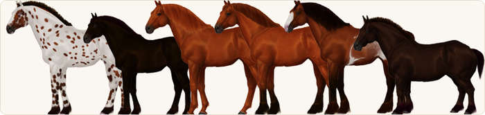 An assortment of dynamically generated horses