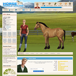 The current layout of a default horse profile page.
