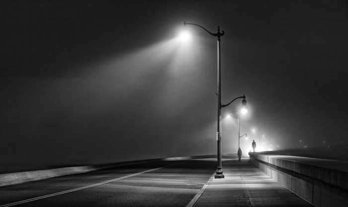 Best of Show 2012 - A Walk in the Fog