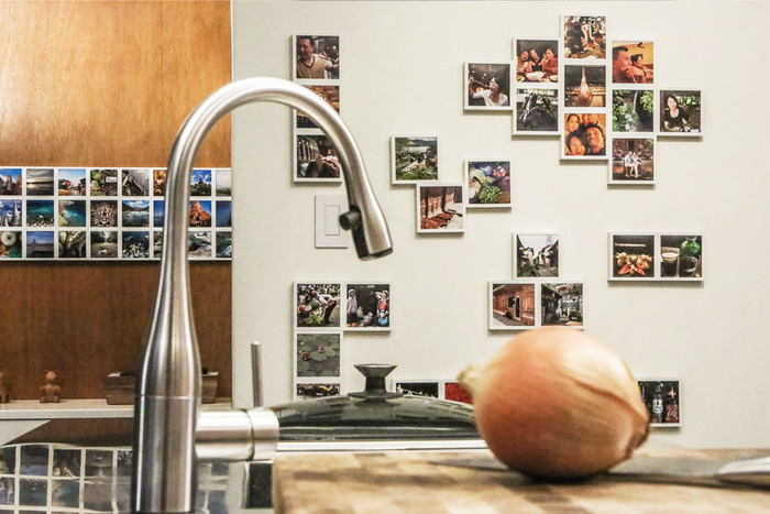 Be creative, add life to your home or office