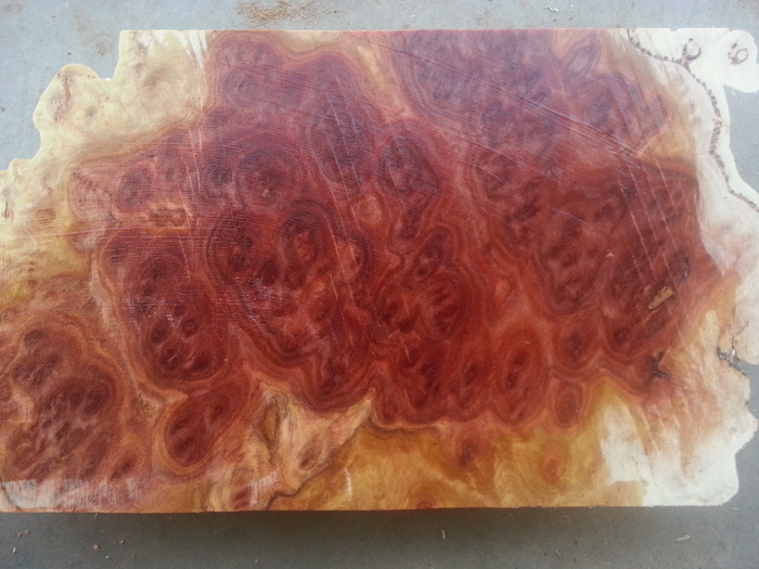 Red Mallee Burl.