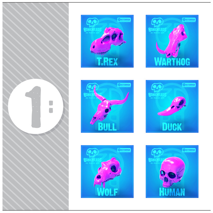 Set '1' Includes: T.Rex, Warthog, Bull, Duck, Wolf, & Human Skulls
