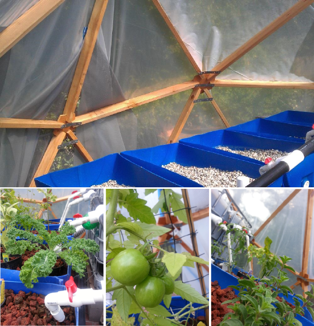 Dome Home Kits: The Modular Geodesic Bio Dome & Micro Aquaponic Kits By