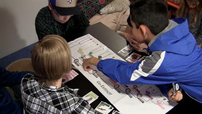 Middle school students playtest a Go Extinct! prototype