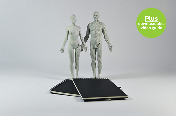 Treat a friend! Any 2 anatomical reference figures plus 2 A5 sketchbooks!