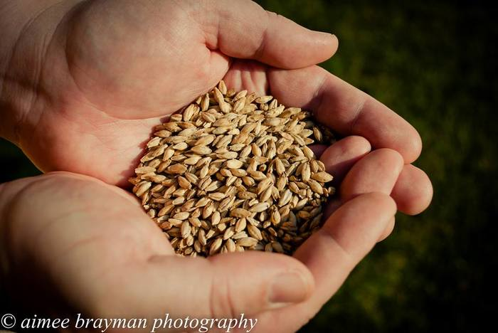 From Grain to Goodness!