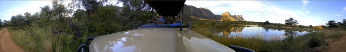 ... on safari. (click to see the video)