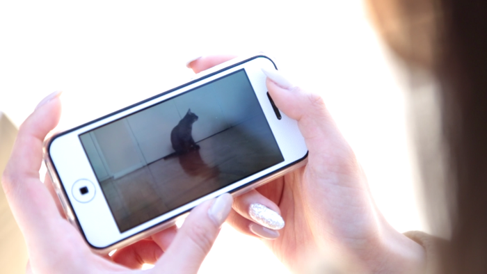 Nibbles Camera