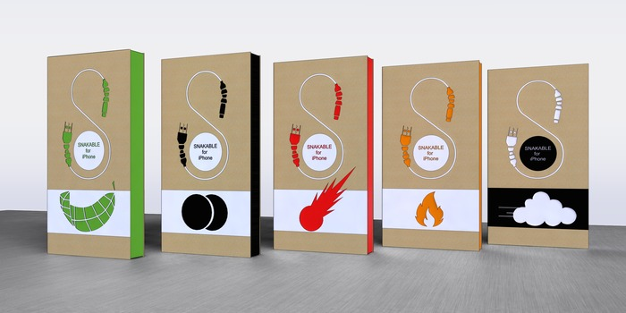 Proposed Packaging
