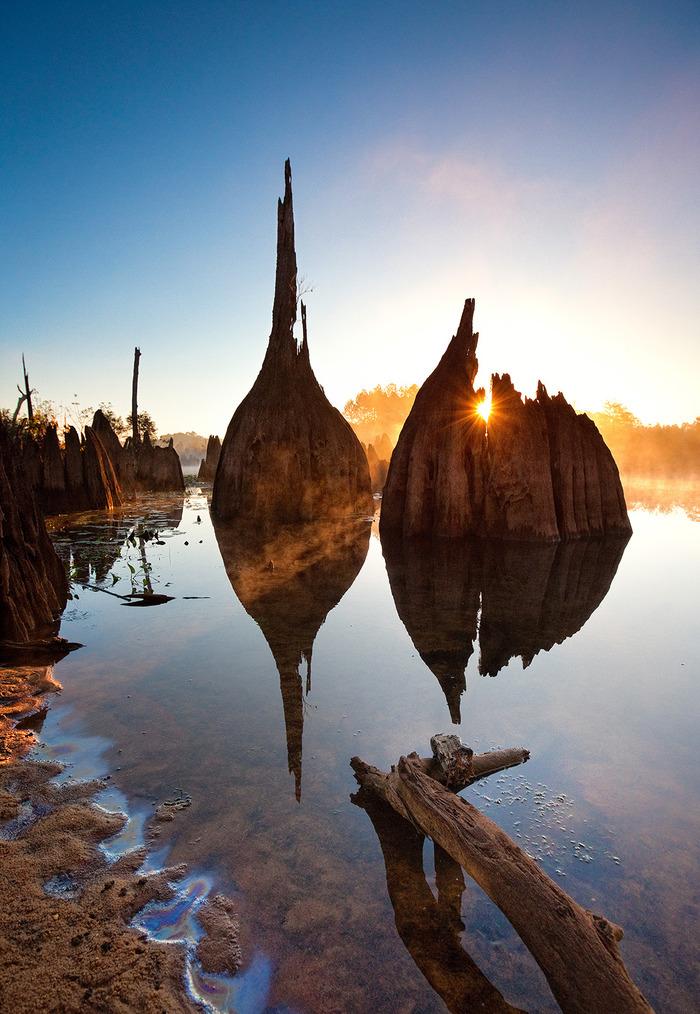 Dead Lakes,FL